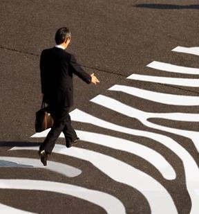 https://iollita.files.wordpress.com/2010/01/good-zebras.jpg