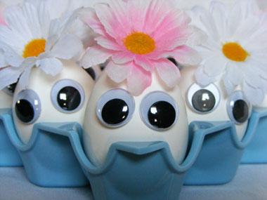 яйца с очички
